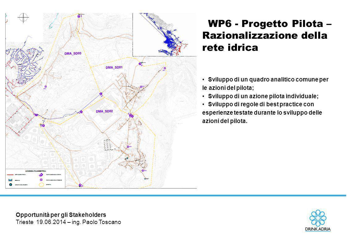 WP6 - Progetto Pilota – Razionalizzazione della rete idrica