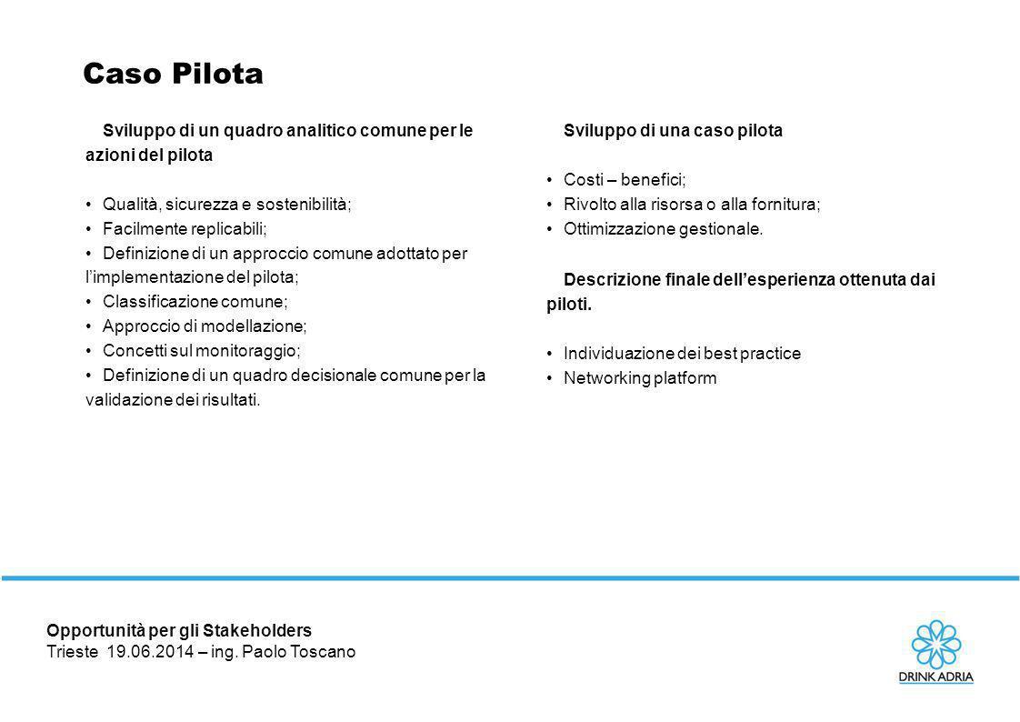 Caso Pilota Sviluppo di un quadro analitico comune per le azioni del pilota. Qualità, sicurezza e sostenibilità;