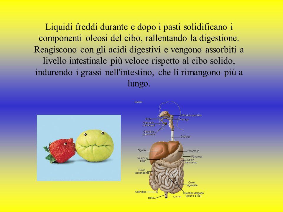 Liquidi freddi durante e dopo i pasti solidificano i componenti oleosi del cibo, rallentando la digestione.