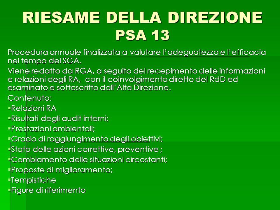RIESAME DELLA DIREZIONE PSA 13