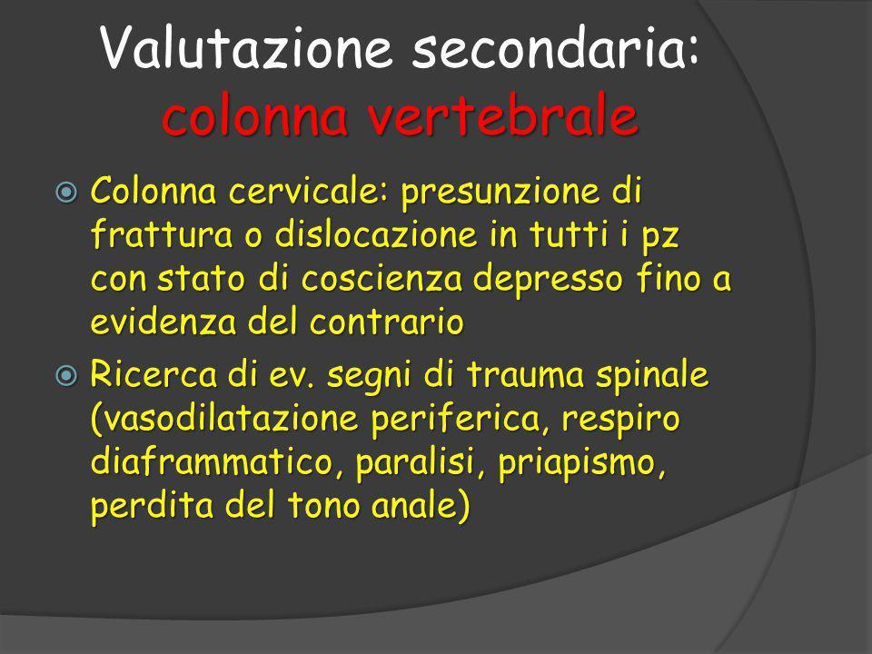 Valutazione secondaria: colonna vertebrale