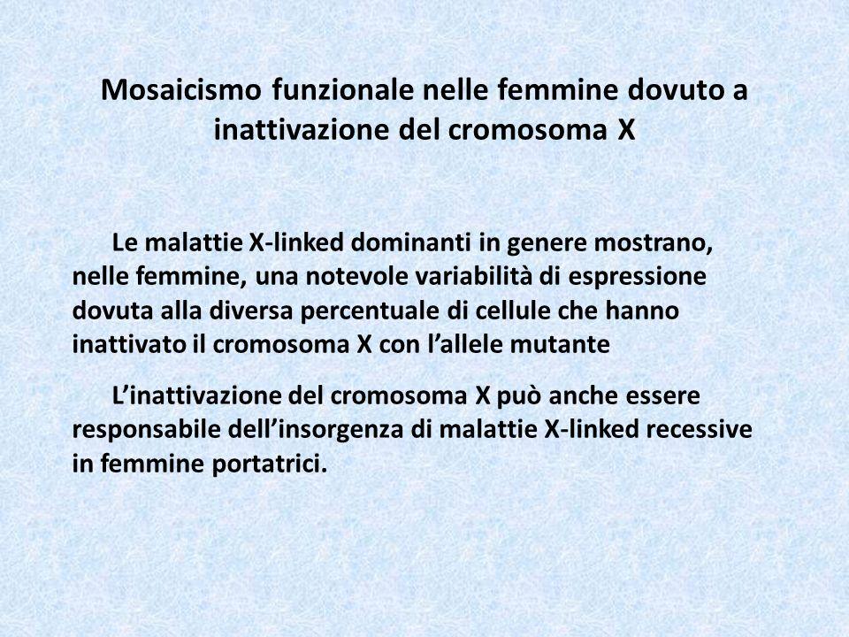 Mosaicismo funzionale nelle femmine dovuto a inattivazione del cromosoma X
