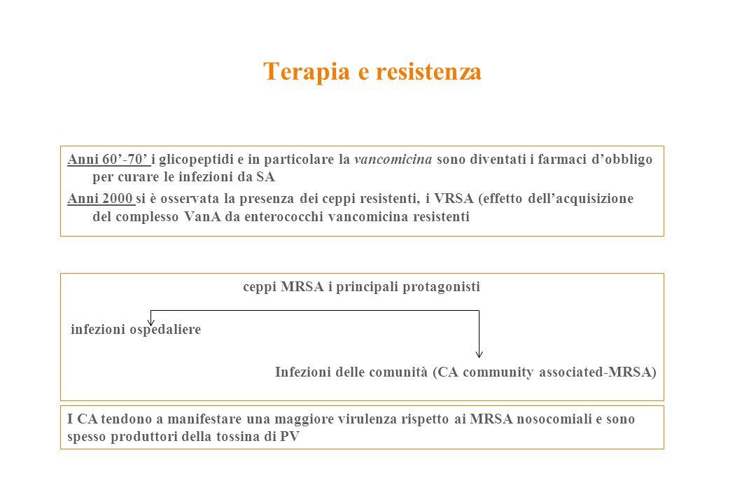 ceppi MRSA i principali protagonisti