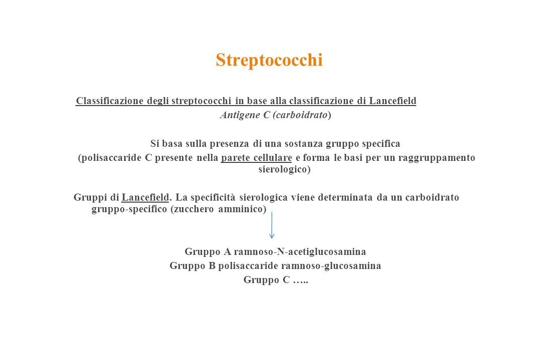 Streptococchi Classificazione degli streptococchi in base alla classificazione di Lancefield. Antigene C (carboidrato)
