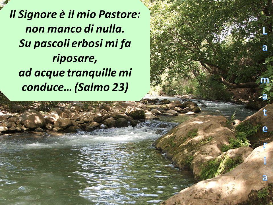 Il Signore è il mio Pastore: non manco di nulla.