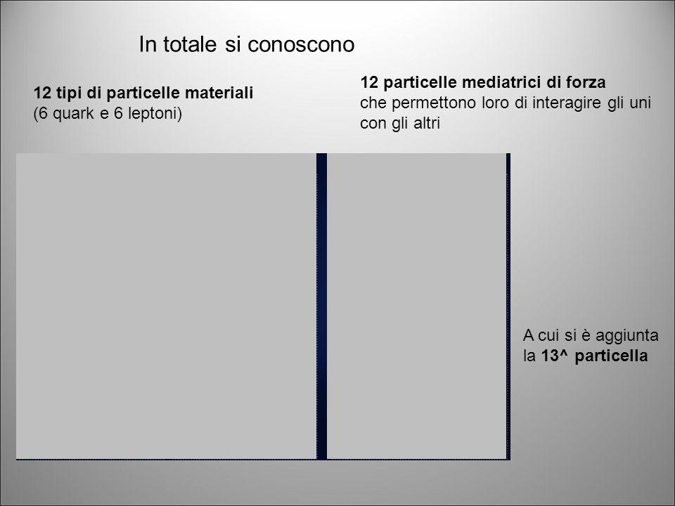 In totale si conoscono 12 particelle mediatrici di forza