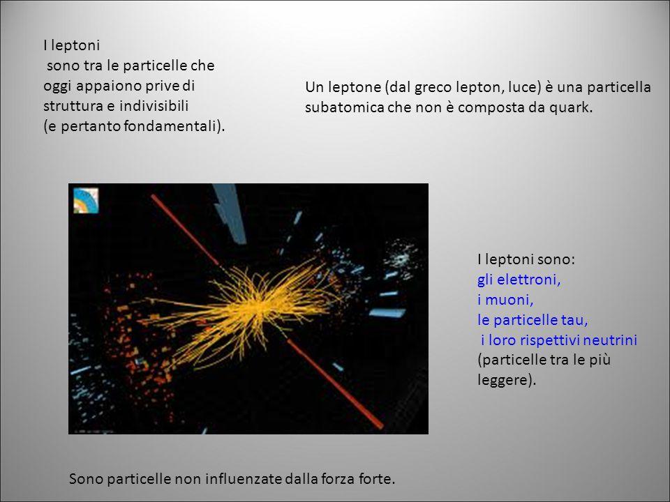 I leptoni sono tra le particelle che oggi appaiono prive di struttura e indivisibili. (e pertanto fondamentali).