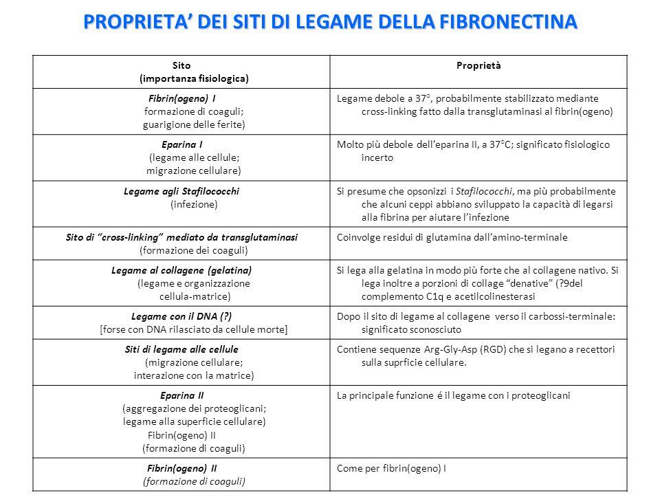 PROPRIETA' DEI SITI DI LEGAME DELLA FIBRONECTINA