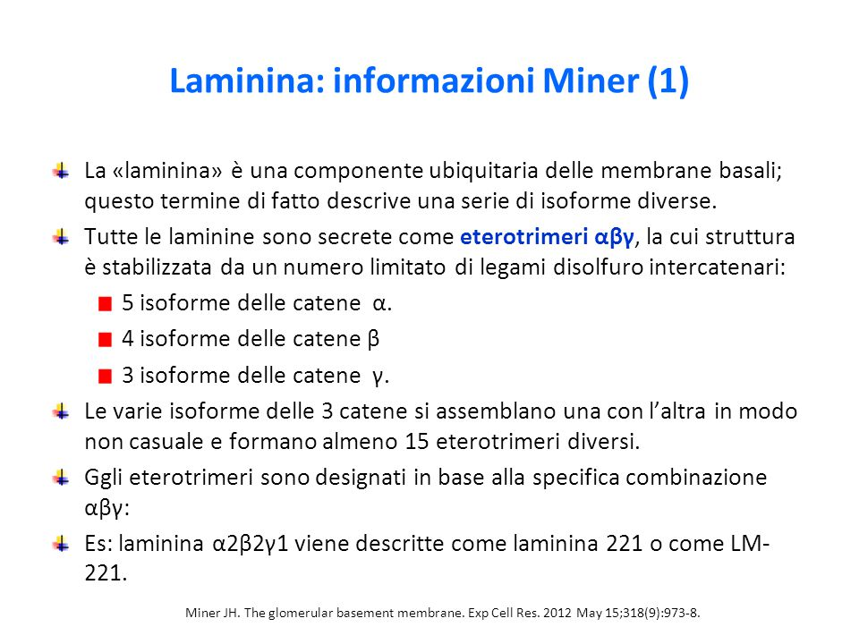 Laminina: informazioni Miner (1)