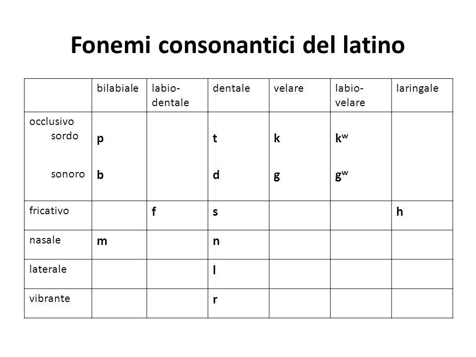 Fonemi consonantici del latino