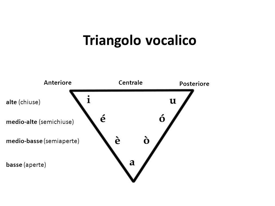 Triangolo vocalico Anteriore Centrale Posteriore alte (chiuse)