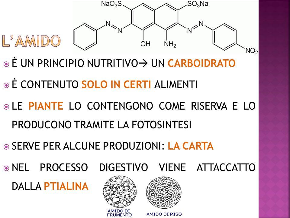 L'AMIDO È UN PRINCIPIO NUTRITIVO UN CARBOIDRATO