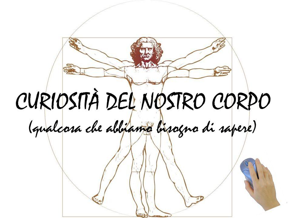 CURIOSITÀ DEL NOSTRO CORPO
