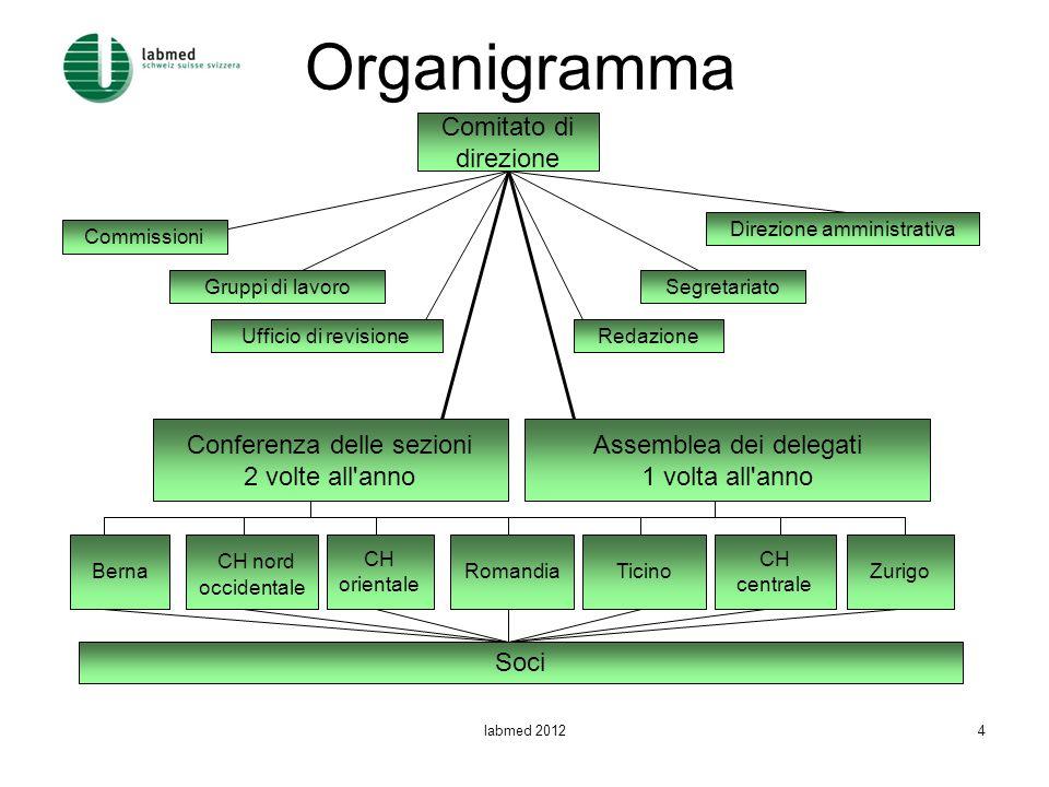 Organigramma Comitato di direzione