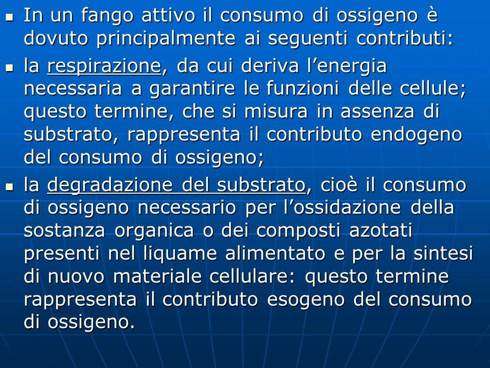 In un fango attivo il consumo di ossigeno è dovuto principalmente ai seguenti contributi: