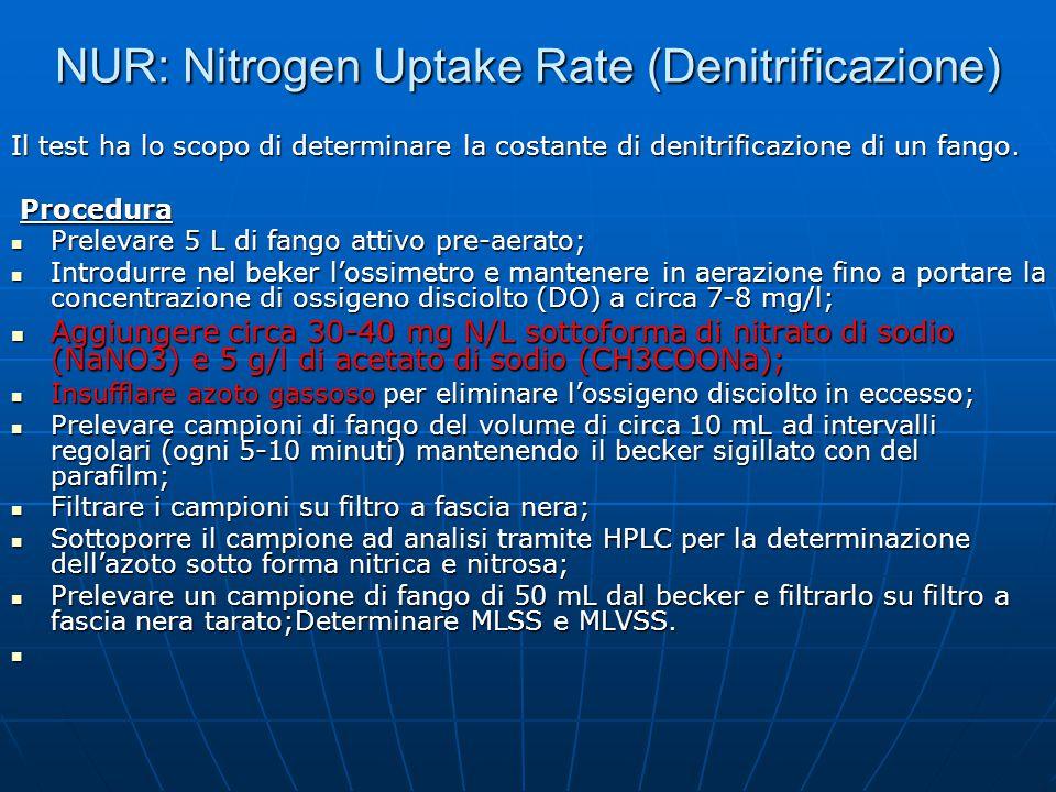 NUR: Nitrogen Uptake Rate (Denitrificazione)