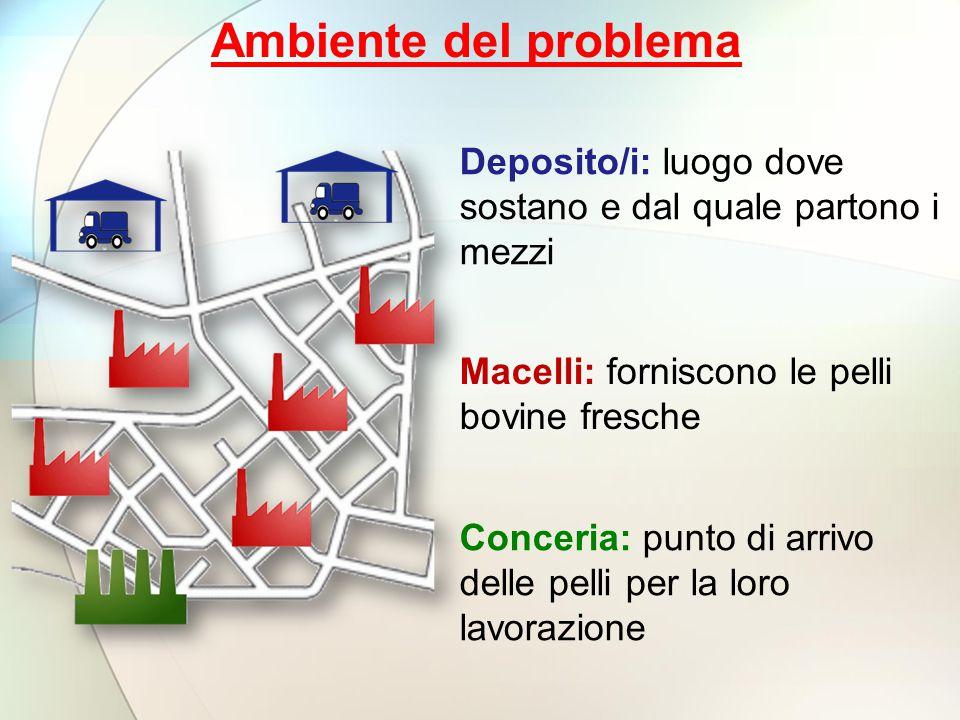 Ambiente del problema Deposito/i: luogo dove sostano e dal quale partono i mezzi. Macelli: forniscono le pelli bovine fresche.