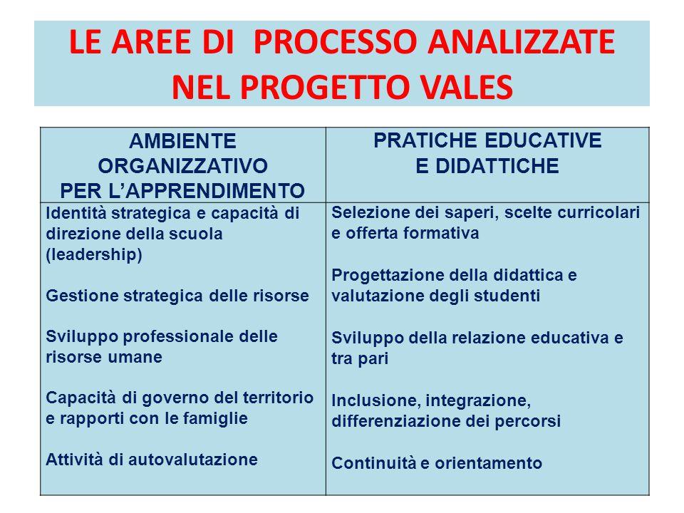 LE AREE DI PROCESSO ANALIZZATE NEL PROGETTO VALES