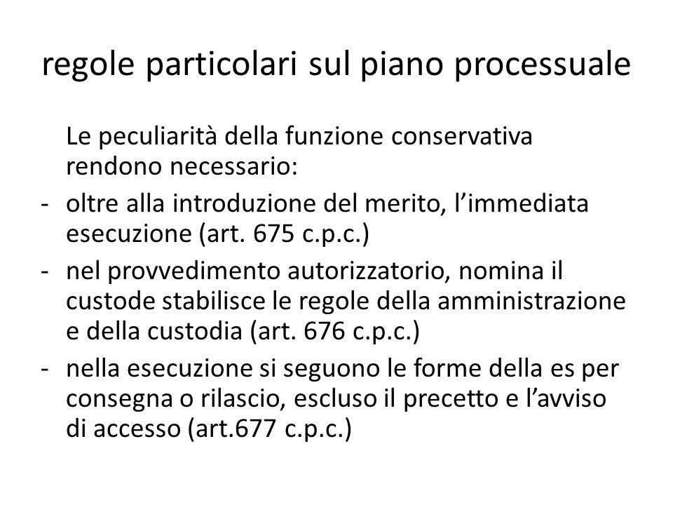 regole particolari sul piano processuale