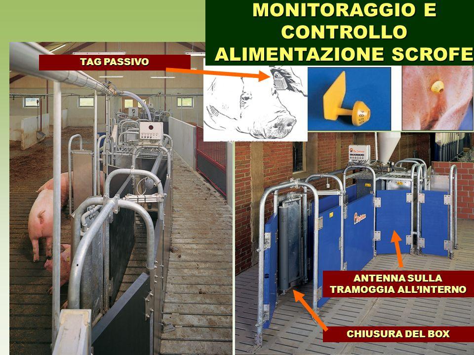 MONITORAGGIO E CONTROLLO ALIMENTAZIONE SCROFE