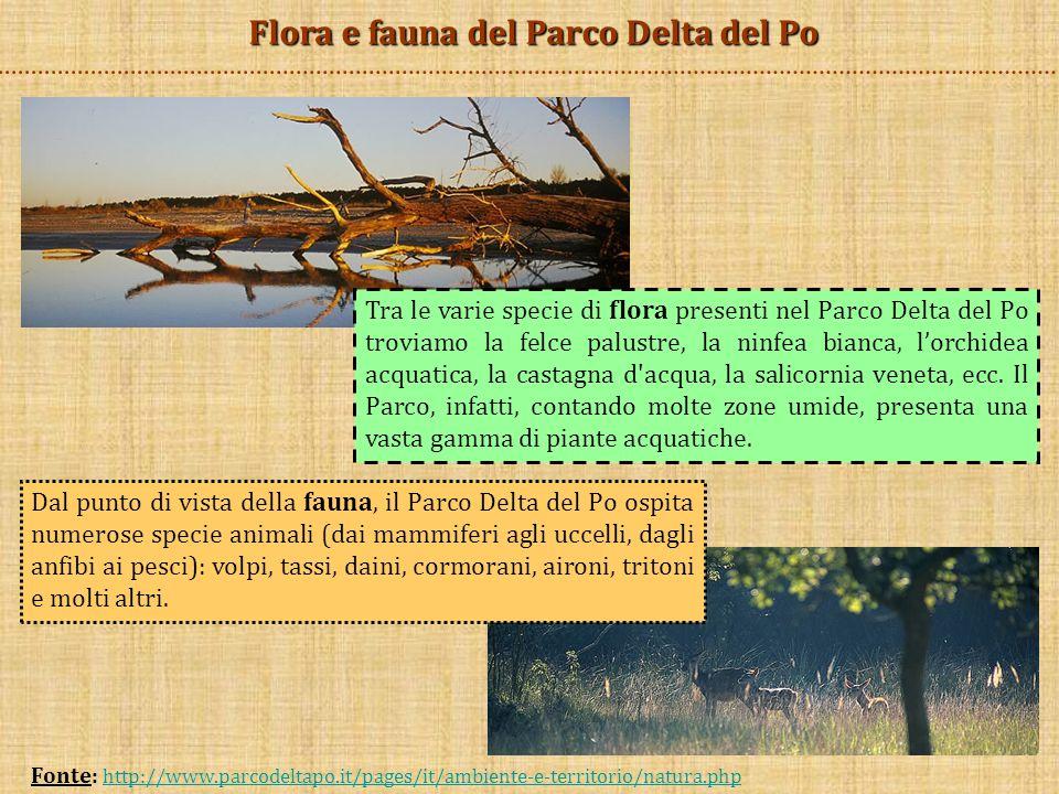 Flora e fauna del Parco Delta del Po