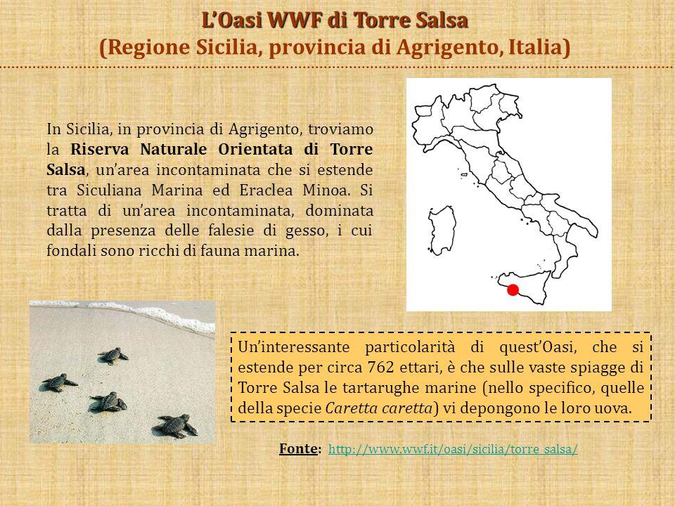 L'Oasi WWF di Torre Salsa (Regione Sicilia, provincia di Agrigento, Italia)