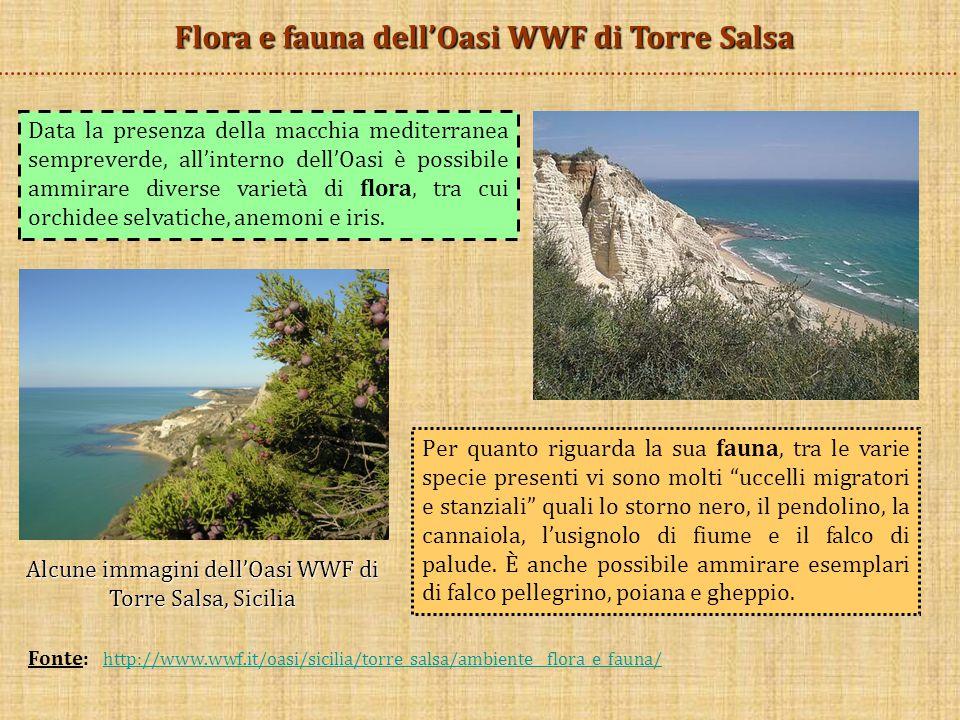 Flora e fauna dell'Oasi WWF di Torre Salsa