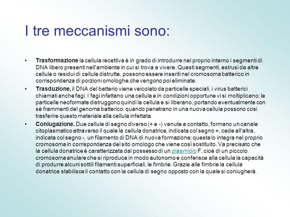 I tre meccanismi sono: