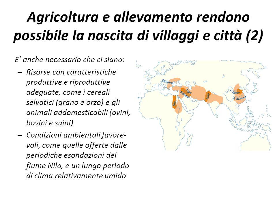 Agricoltura e allevamento rendono possibile la nascita di villaggi e città (2)
