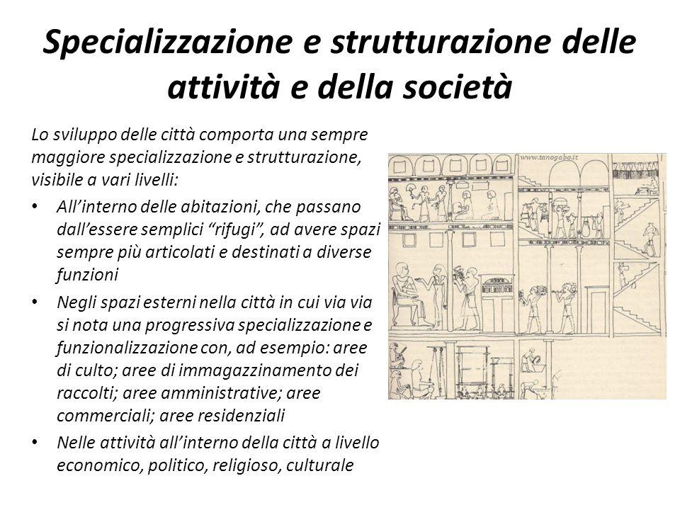 Specializzazione e strutturazione delle attività e della società