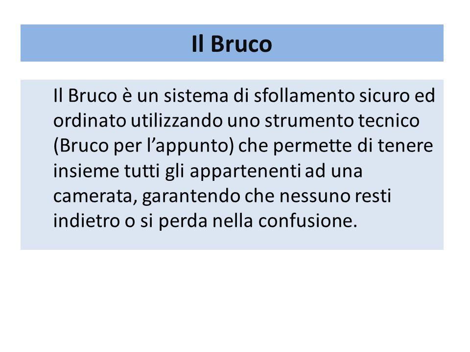 Il Bruco