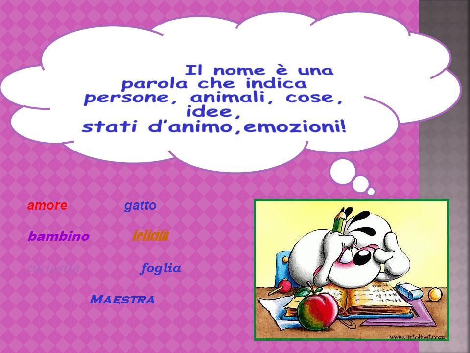 Il nome Il nome è una parola che indica persone, animali, cose, idee,