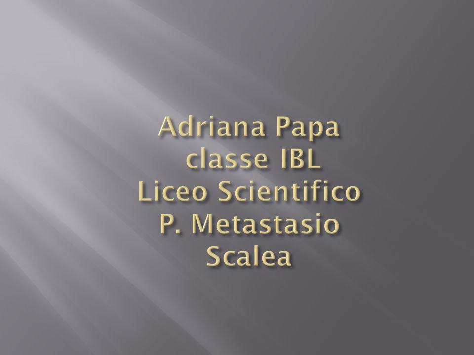 Adriana Papa classe IBL Liceo Scientifico P. Metastasio Scalea