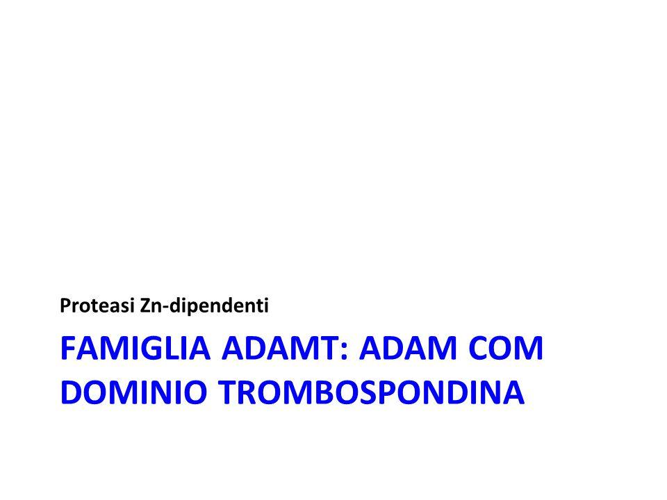 Famiglia adamT: ADAM com dominio trombospondina