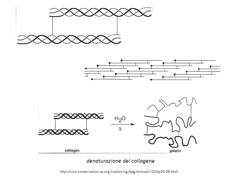 denaturazione del collagene