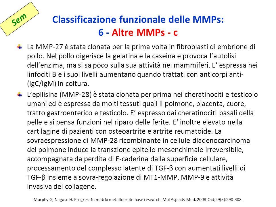 Classificazione funzionale delle MMPs: 6 - Altre MMPs - c