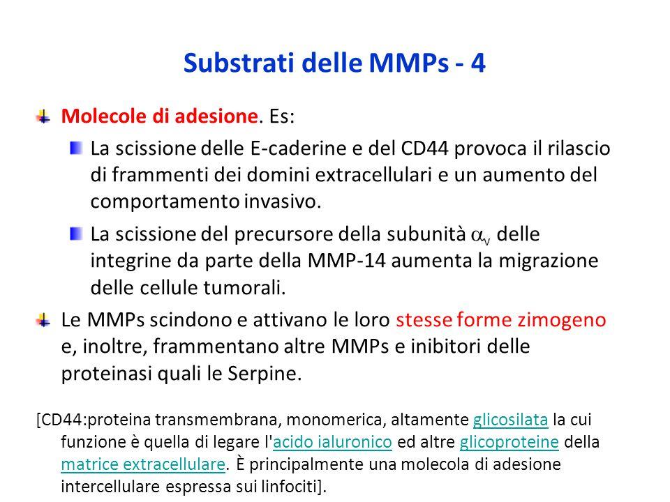Substrati delle MMPs - 4 Molecole di adesione. Es: