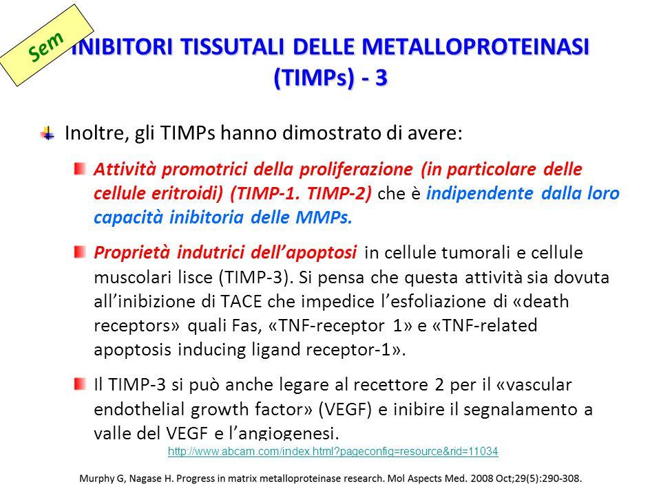 INIBITORI TISSUTALI DELLE METALLOPROTEINASI (TIMPs) - 3