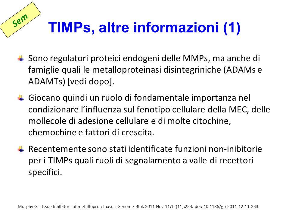 TIMPs, altre informazioni (1)