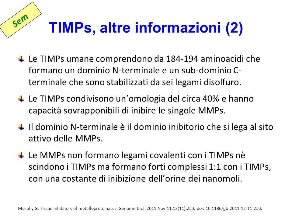 TIMPs, altre informazioni (2)