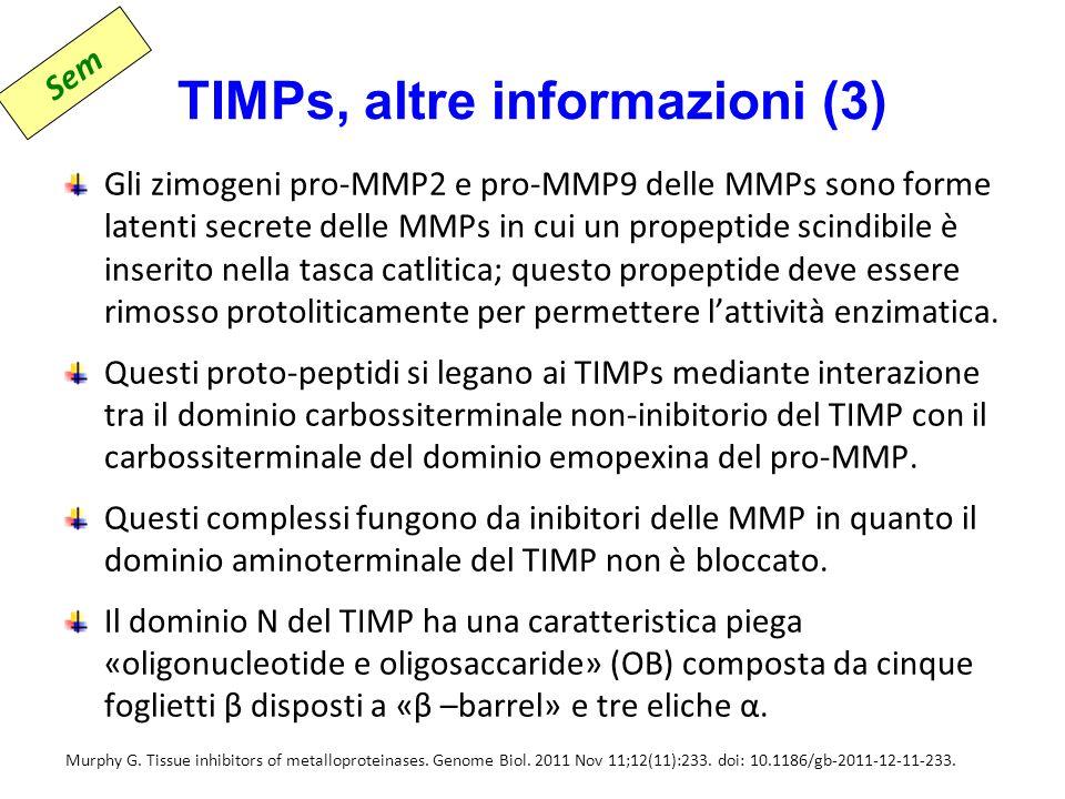TIMPs, altre informazioni (3)