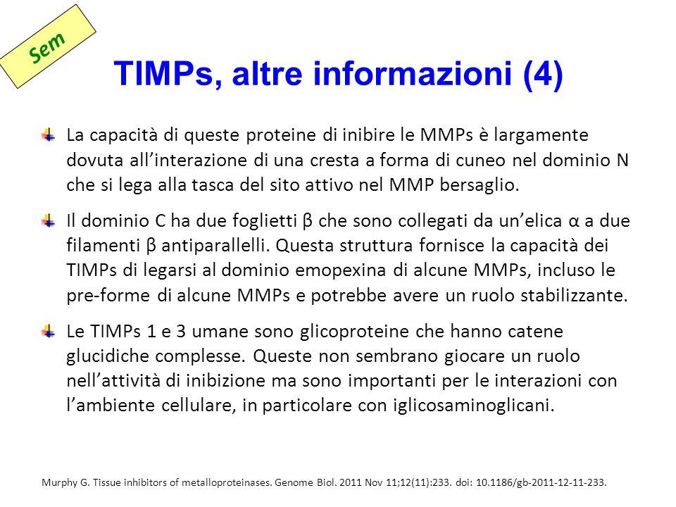 TIMPs, altre informazioni (4)