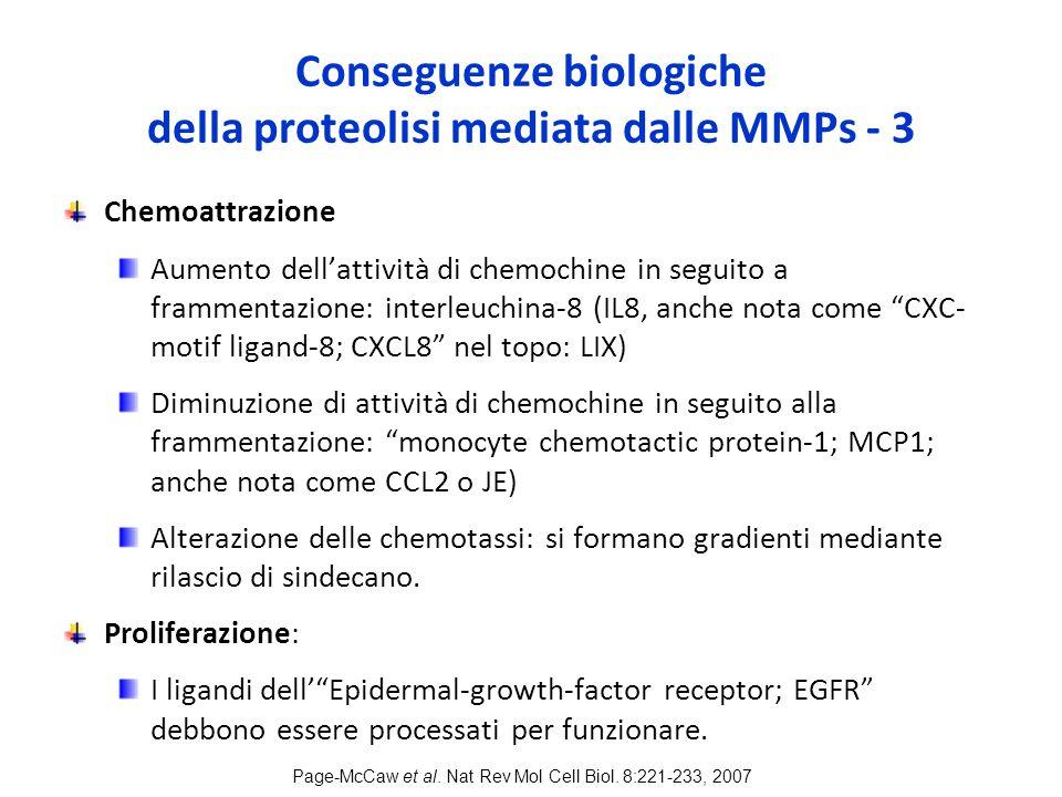 Conseguenze biologiche della proteolisi mediata dalle MMPs - 3