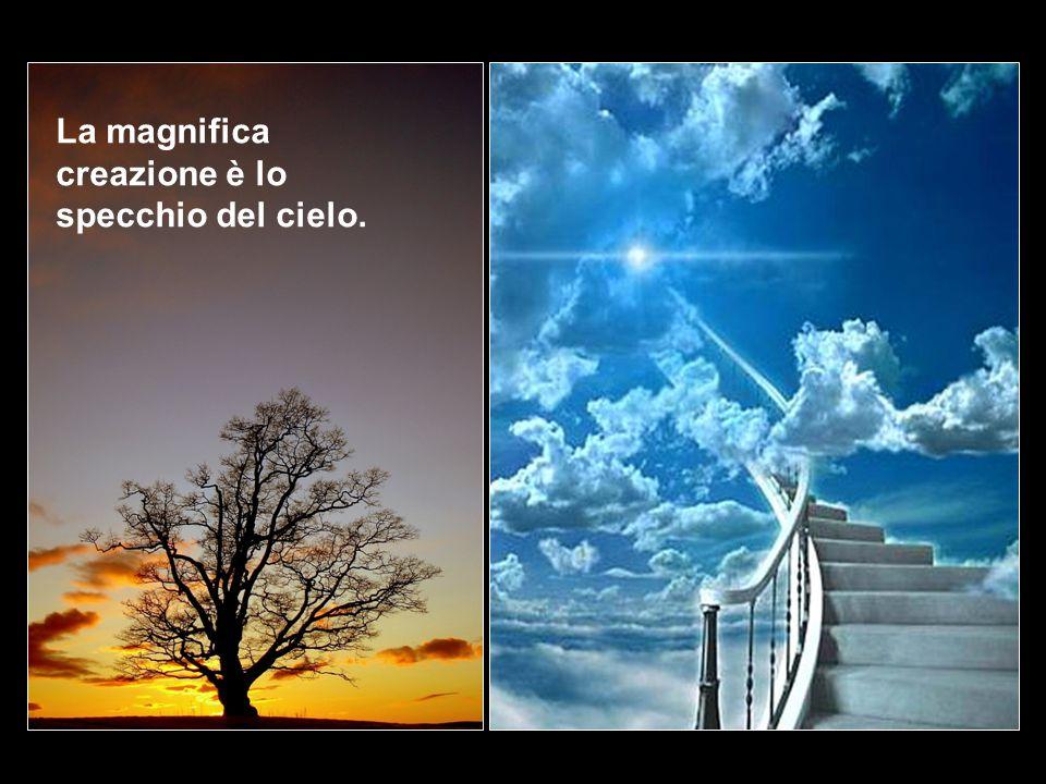 La magnifica creazione è lo specchio del cielo.