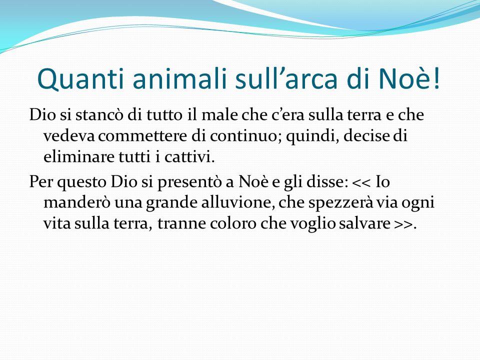 Quanti animali sull'arca di Noè!