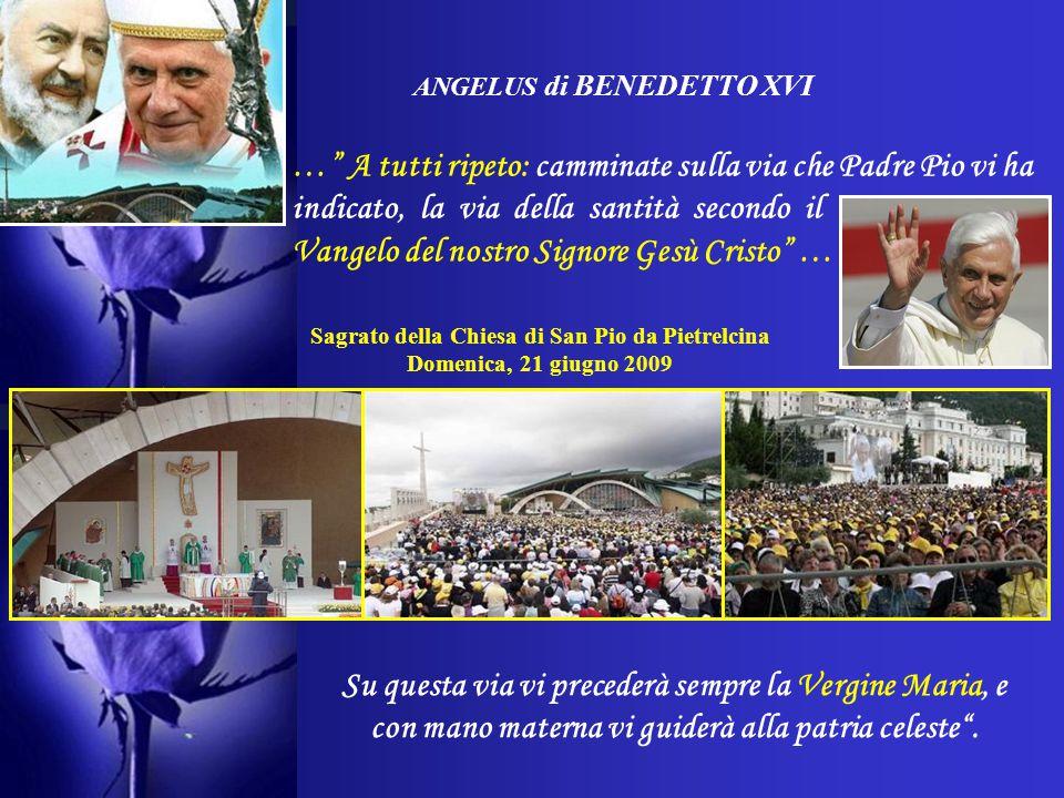 ANGELUS di BENEDETTO XVI