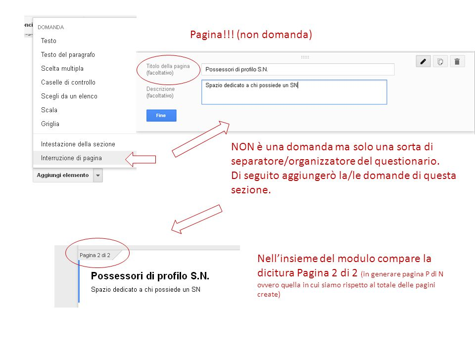 Pagina!!! (non domanda) NON è una domanda ma solo una sorta di separatore/organizzatore del questionario.