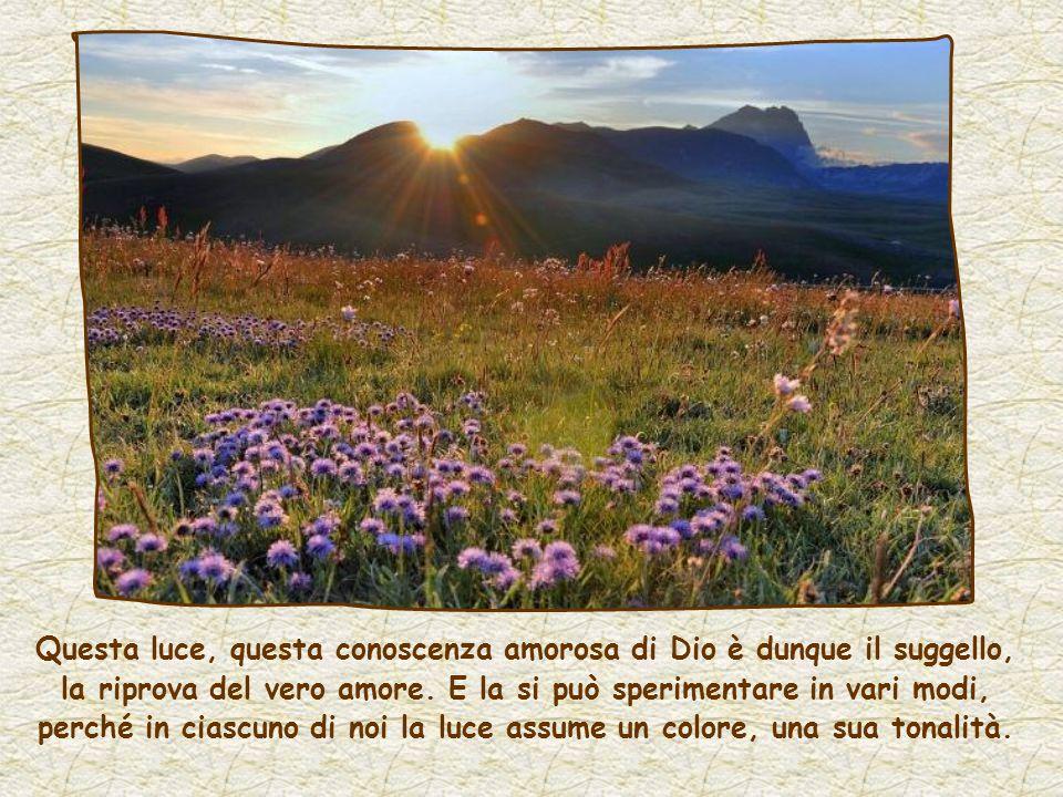 Questa luce, questa conoscenza amorosa di Dio è dunque il suggello, la riprova del vero amore.