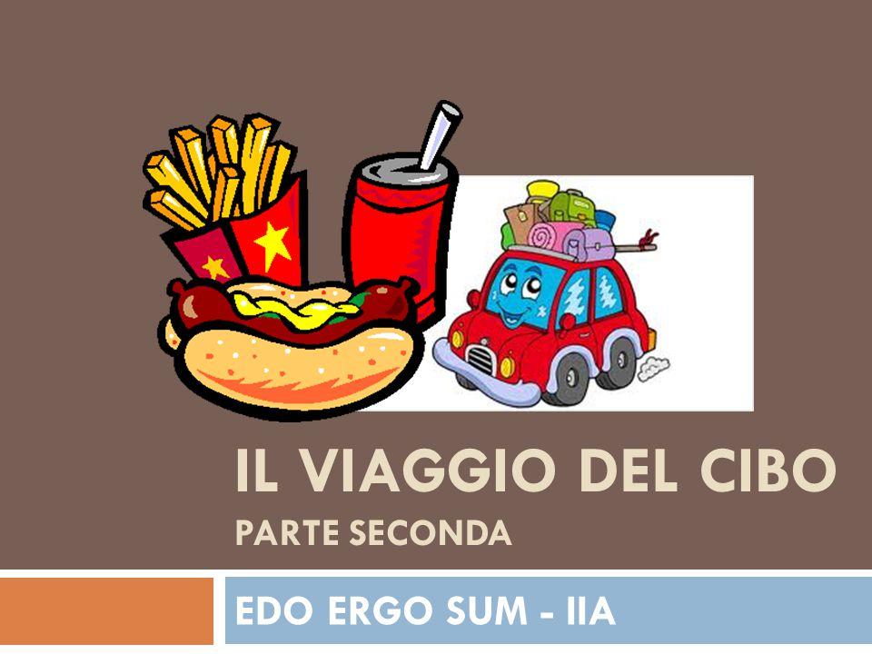 IL VIAGGIO DEL CIBO PARTE SECONDA