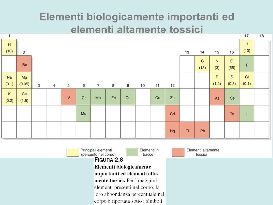 Elementi biologicamente importanti ed elementi altamente tossici